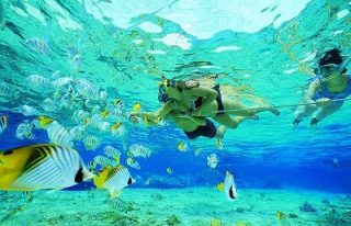 Snorkeling-di-nusa-penida2-320x206