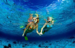 snorkeling-di-nusa-penida-320x206