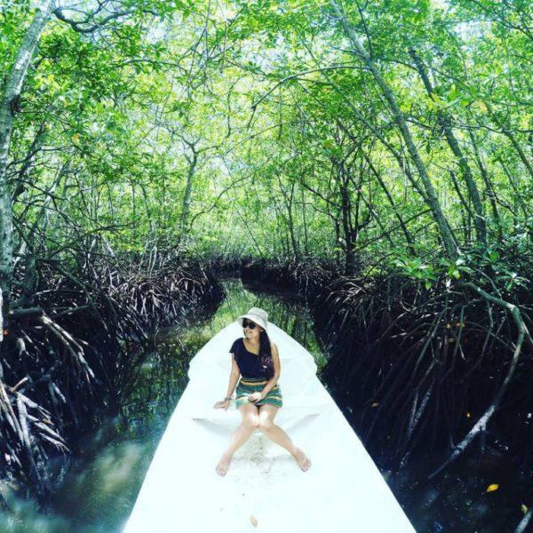 Mangrove Forest Nusa Lembonga@thenusapenida.com