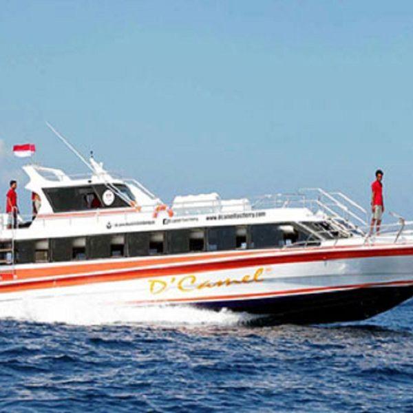 Dcamel-Fast-Boat..