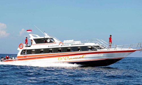 Dcamel Fast Boat..