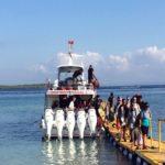dwimanunggalfastboat@Thenusapenida.com