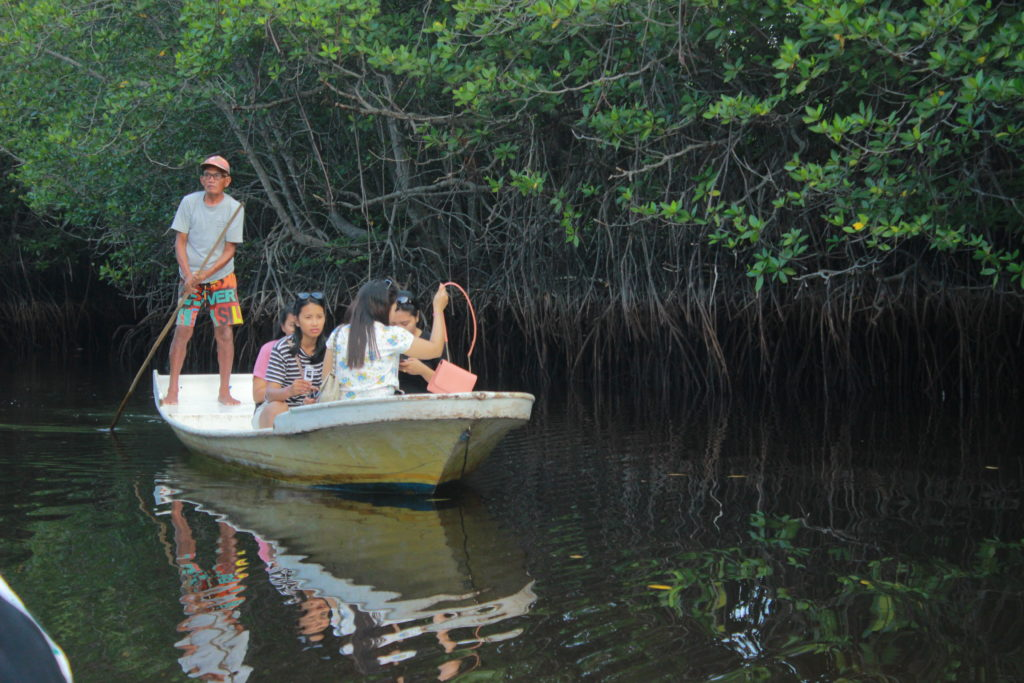 mangrove forest Nusa Lembongan@thenusapenida.com