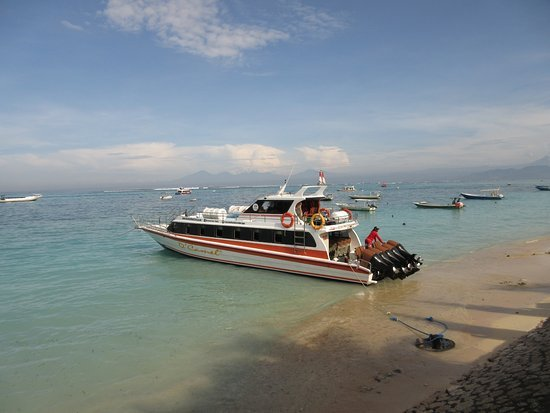 Dcamel fast boat@thenusapenida.com