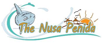 the-nusa-penida