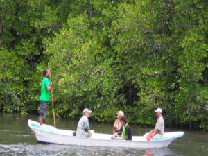 wisata-hutan-magrove-lembongan-600x354