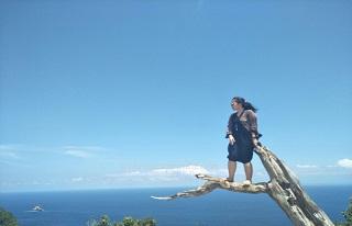 Pohon Cinta Mati Nusa Penida@thenusapenida