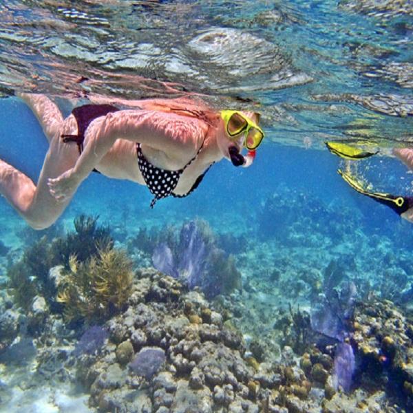 SnorkelingdiNusaPenida@thenusapenida.com