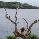 Tree Angel Nusa Penida@thenusapenida.com
